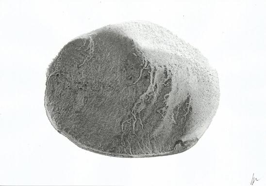 alice-le-guiffant-encre-Ovoide-1