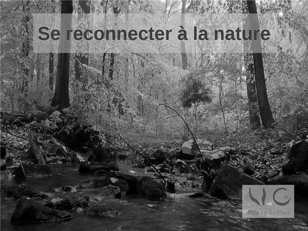 Reconnexion: se reconnecter avec la Nature