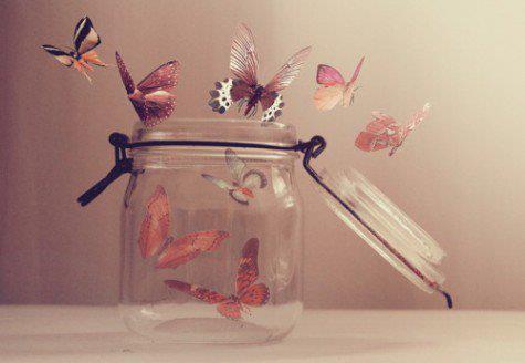 alice-le-guiffant-je-ne-veux-plus-etre-en-couple-papillons